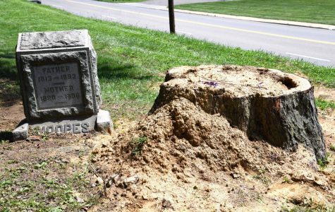 Greenwood Cemetery findings confirmed as resurfaced remains