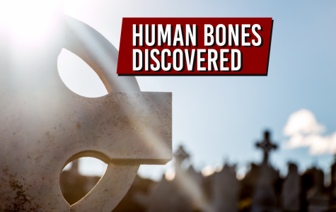 Man discovers human bones while walking in cemetery