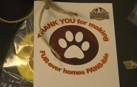 Dog warden volunteers recognized by county commissioners