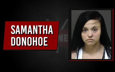Mother indicted for infant's hot car death