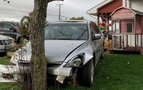 Driver hits pizza shop pillars, runs into tree