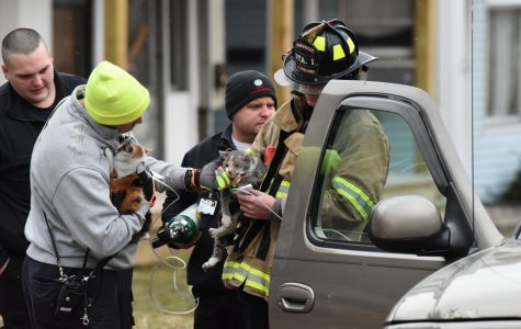 Two people, three animals rescued from fire on Maple Avenue