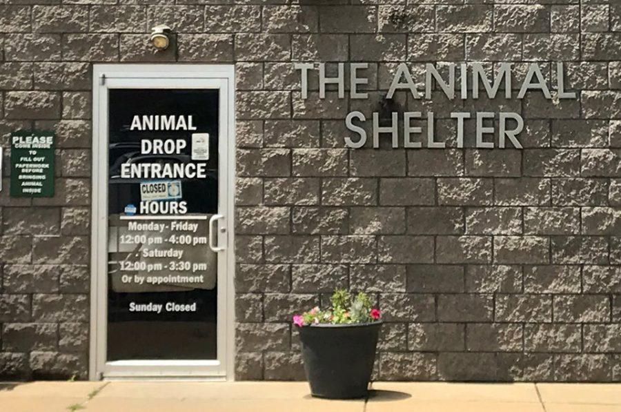 Animal+Shelter+director+resigns+suddenly