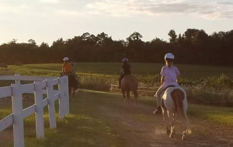 Breaking Free getting ducks in a row for annual fundraiser, children's horse show